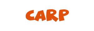 BobCo summer sizzler Carp Event